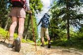 Hikers walking with trekking poles — Stock Photo