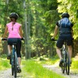 Bikers in forest cycling on track — Stock Photo #28065469