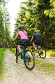 Rowerzystów górskich w lesie z tyłu — Zdjęcie stockowe