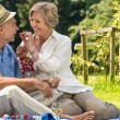 Smiling pensioner couple picnicking summer — Stock Photo