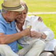 Senior couple clinking glasses on picnic — Stock Photo