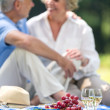 Elderly couple happy picnicking on grass — Stock Photo