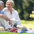 Senior couple picnicking outdoors smiling — ストック写真