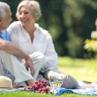 Senior couple picnicking outdoors smiling — Stock Photo