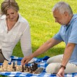 Retired senior couple playing chess in park — Stock Photo