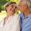 Foto Stock: Happy retirement senior couple laughing together