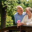 Retired couple romantic hugging in park — Stock Photo