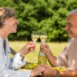 Elderly couple celebrating outdoors — Stock Photo