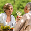 Happy senior citizens clinking glasses — Stock Photo #28858825