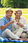 Happy senior couple drinking wine outdoors — Stock Photo