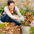 Happy woman putting dry leaves bucket yard — Stock Photo