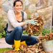 Stock Photo: Woman putting leaves in bucket autumn gardening