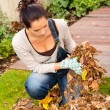 Young woman autumn gardening cleaning leaves — Stock Photo