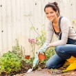 Smiling woman autumn gardening backyard hobby — Photo
