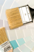 Paint brushes and shade card — Stock Photo