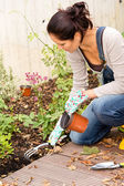 Woman kneeling planting flowerbed autumn garden — Stock Photo