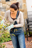 Woman pruning autumn tree clippers garden hobby — Stock Photo