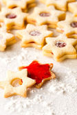 Gingerbread christmas cookie star powdered sugar — Stock Photo