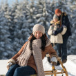 Young womsitting winter wooden sledge — Stock Photo #35239479