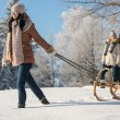Young woman pulling winter sledge snow countryside — Stockfoto