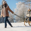 Young woman pulling winter sledge snow countryside — ストック写真
