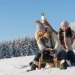 Two girlfriends sledge downhill in wintertime — Stock Photo #35239537