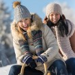 Two female friends sledge downhill in wintertime — Stock Photo