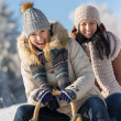 Stock Photo: Two female friends sledge downhill in wintertime
