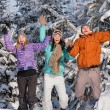 Group of teenagers jumping together in wintertime — Stok fotoğraf