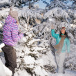 Two girlfriends throw snow balls winter forest — Stock Photo