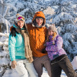 Three friends enjoy snow winter holiday mountains — Stock Photo