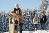 Young woman sunny winter lean against sledge — Stock Photo