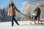 Young woman pulling winter sledge snow countryside — Stock fotografie