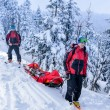 Ski patrol transporting injured skier snow forest — Stock Photo #38837321