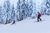 Rescue ski patrol help injured woman skier — Stock Photo