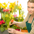 Stock Photo: Florist arrange spring flowers colorful plants
