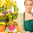Stock Photo: Florist with spring potted flowers
