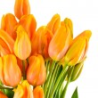 Stock Photo: Spring flowers yellow and orange tulips