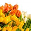 Stock Photo: Colorful bunch of tulips spring flowers