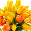 Stock Photo: Beautiful bunch of tulip flowers spring