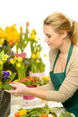 Florist arrange spring flowers colorful — Stock Photo