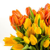 Bunch of spring tulips flowers colorful — Stock Photo