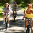 Stock Photo: Friends riding their bikes in countryside