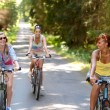 Stock Photo: Happy girls riding bicycles outside