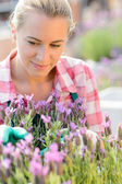 Woman with plant flowers — Stock Photo