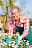 Woman worker caring for flowers — Stock Photo