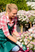 Woman looking on potted flowers — Stock Photo