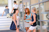 Student girls chatting together — Stock Photo