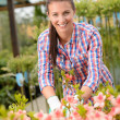 Woman employee working in pink flowerbed — Stock Photo