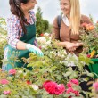 Women talking about plants — Stock Photo #49201523
